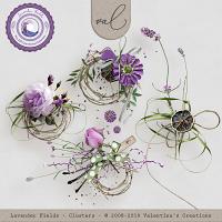 Lavender Fields {Clusters}